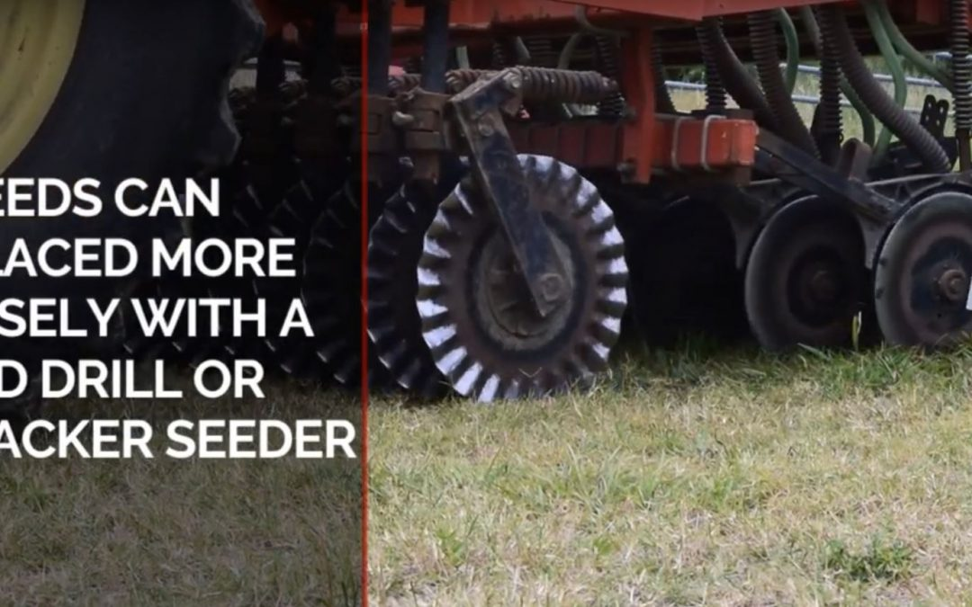 Friday Feature:  Drilling vs Broadcasting Forage Seed