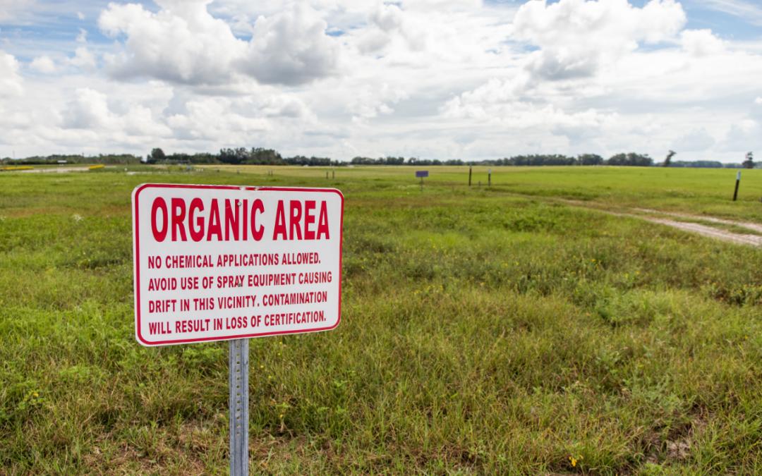 Farming System Alternatives – Focusing on the Natural