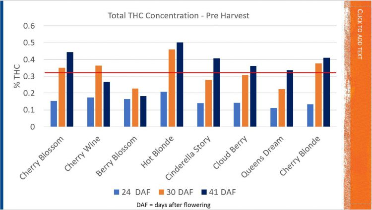 Figure 2 Hemp Varieity THC levels