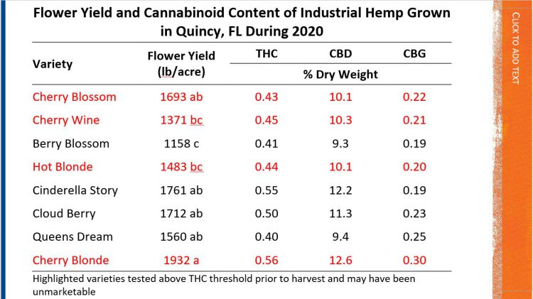 Hemp Variety Yield Data from 2020