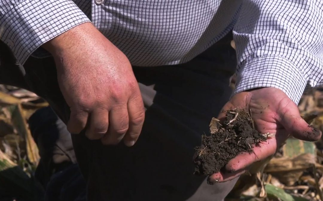 Friday Feature:  Soil Health – Theory of Change