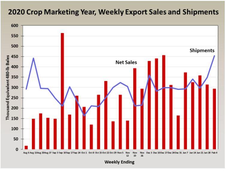 2-12-21 Cotton Crop Export Chart