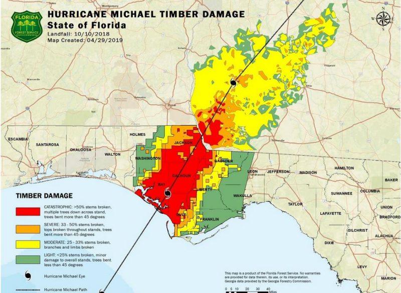 Hurricane Michael Timber Damage Map