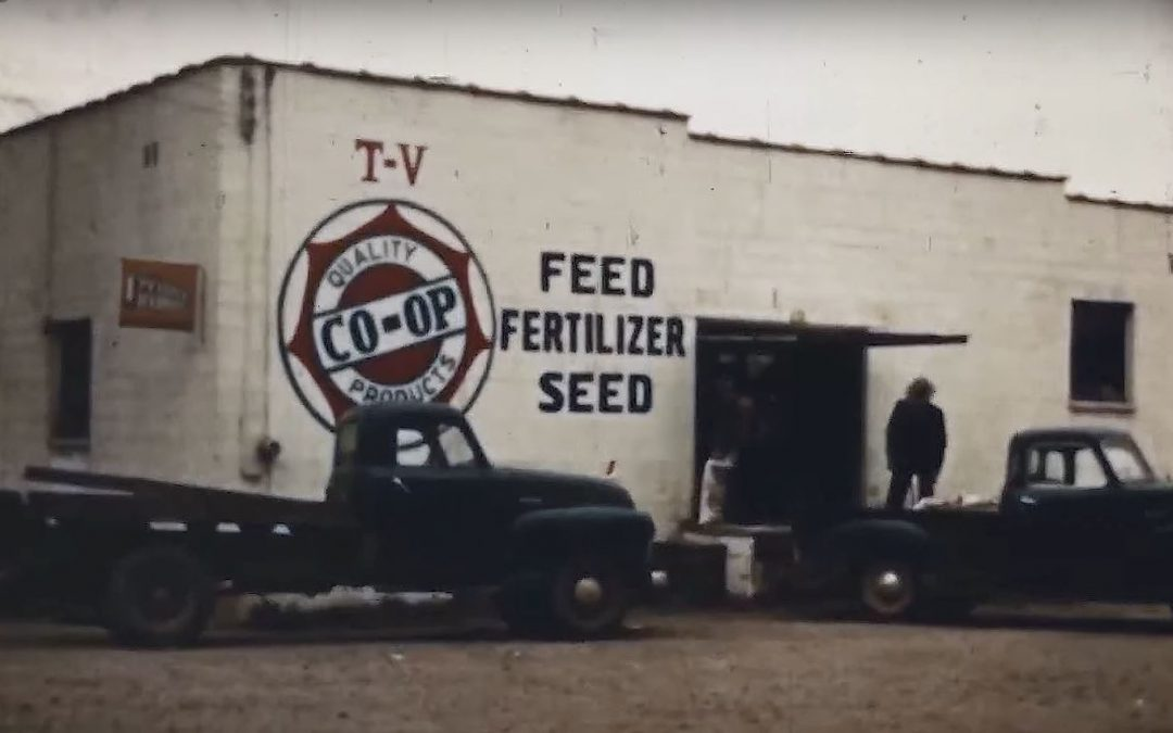 Friday Feature:  1950 Farm Co-Op Promo Film for Alabama Farmers