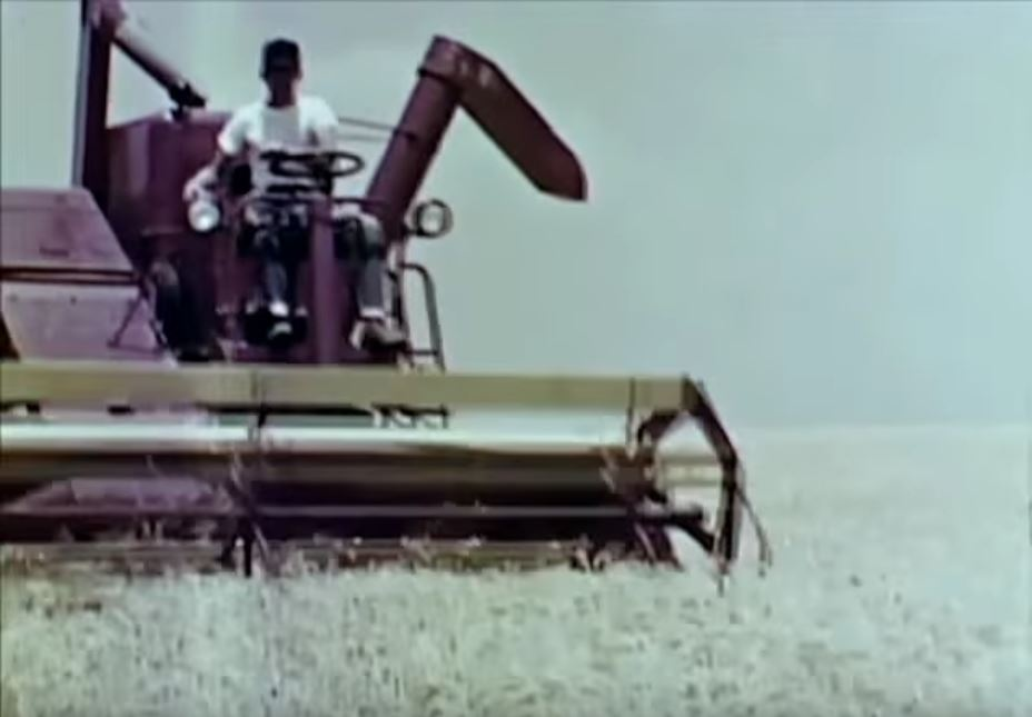 Friday Feature:  1956 Kansas Wheat Farmer