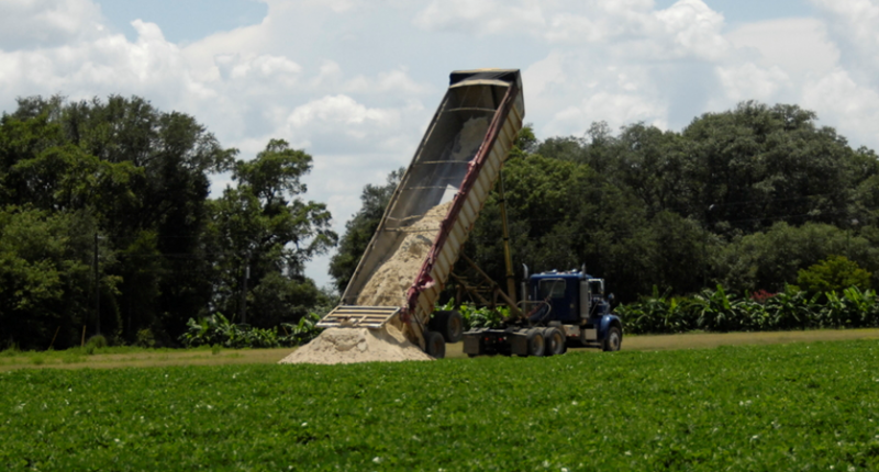 Fig 2 Gypsum being delivered for peanut field application
