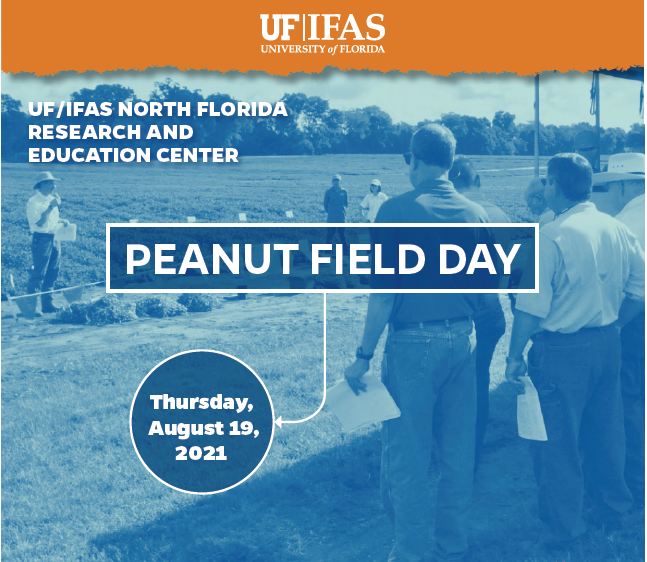 UF Peanut Field Day – August 19