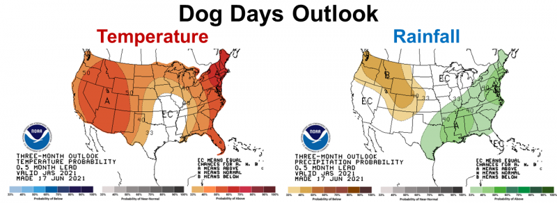 July - Sept 2021 CPC Outlook