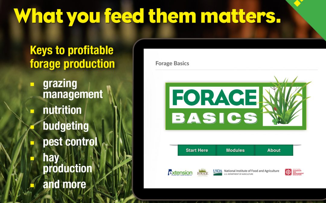 Alabama Extension's Basic Forage Online Course