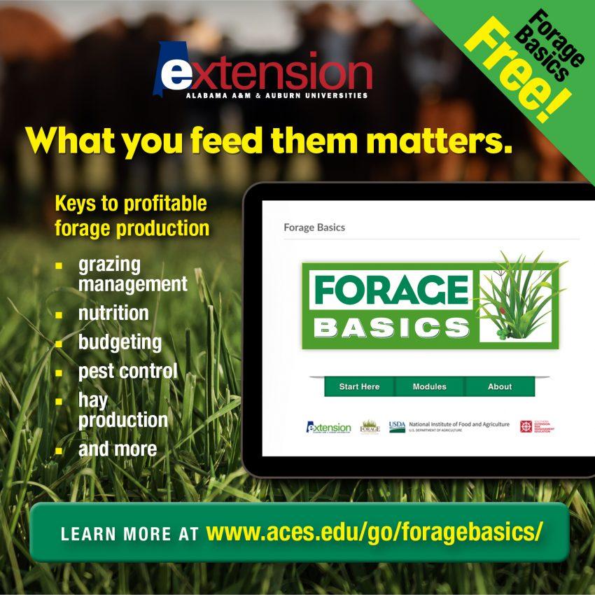 Alabama Extension Forage Basics Online Course