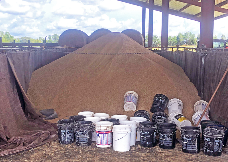 Anticipating and Adapting to New Challenges in the Beef Cattle Business