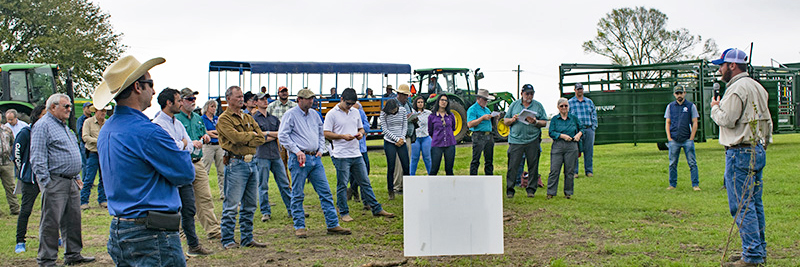 Beef & Forage Field Day – September 30