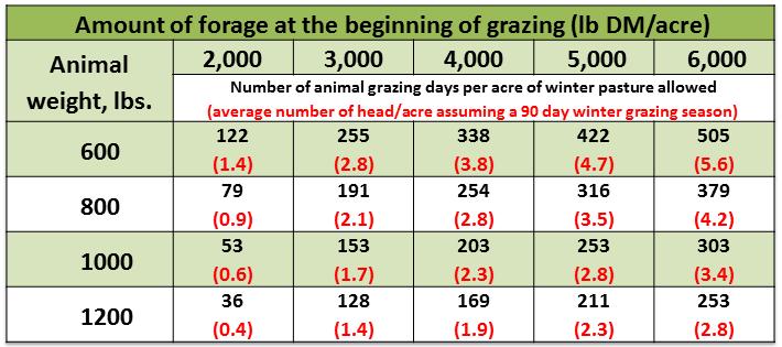 DiLorenzo Grazing Table