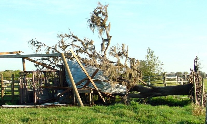 Storm damage to cowpens