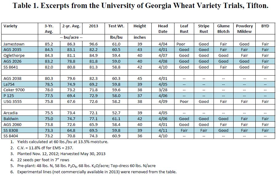 Wheat Varieties 13