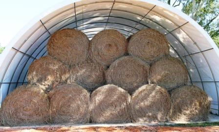The cost of constructing a hay barn can be daunting. However, storing hay in a barn is an excellent way to reduce DM loss.