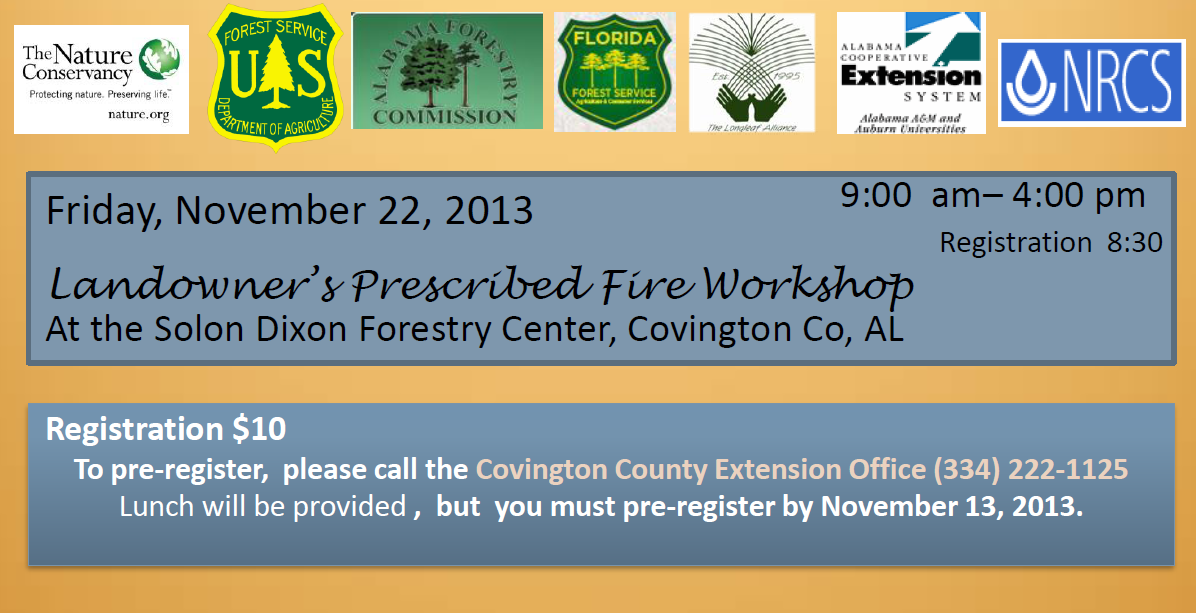 Prescribed Fire 1
